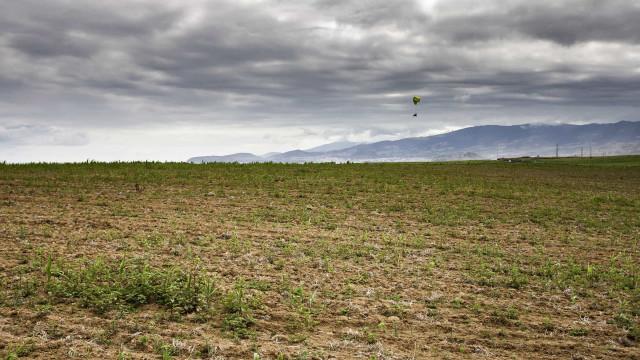 Seca em São Miguel leva agricultores a ponderar reduzir explorações