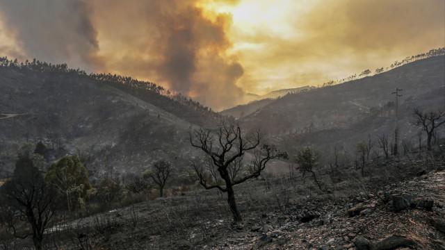 Incêndios em Monchique já queimou 1.000 hectares