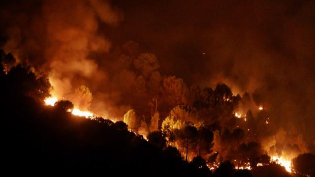 Chamas em Monchique provocam 25 feridos, um em estado grave