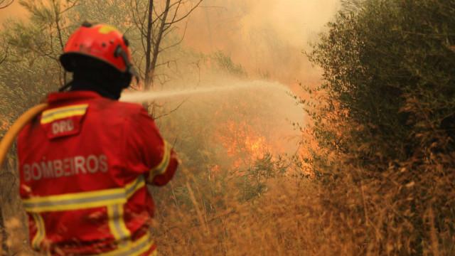 Uma centena de operacionais combatem fogo florestal em Guimarães