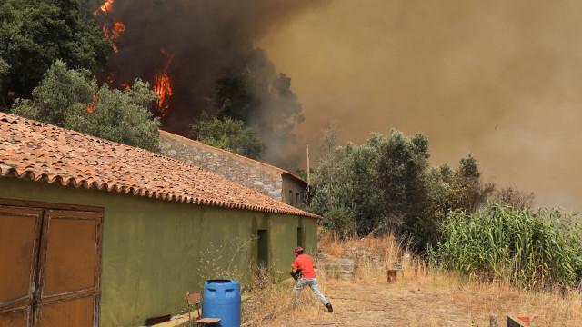 """Moradores retirados do Rasmalho, em Portimão, mas fogo está """"controlado"""""""