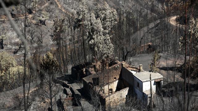 Chamas queimaram quase 28 mil hectares no Algarve
