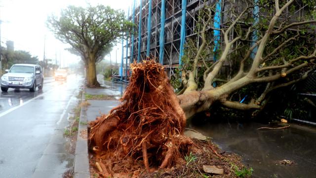 Japão regista 45 feridos em passagem de tufão que obrigou a cancelar voos