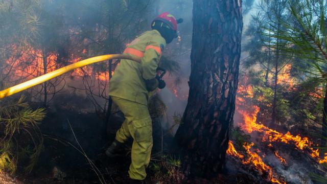 Quase 550 fogos desde 1 de outubro, registo sem paralelo na última década