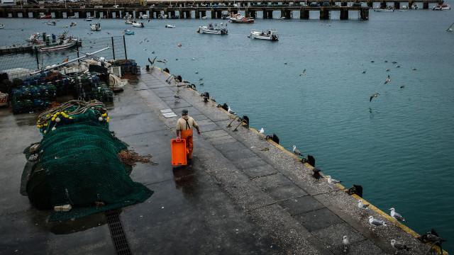 Porto da Baleeira melhorado após 40 anos e queixas de pescadores