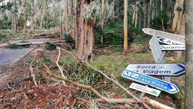 Parlamento chumba proposta para apoios às vítimas da tempestade Leslie