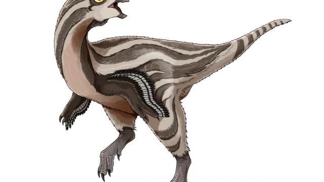 Descoberta na Mongólia nova espécie de dinossauro