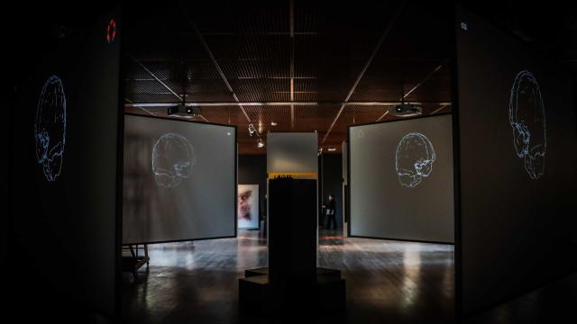 Exposição na Gulbenkian cria roteiro para viajar até dentro do cérebro