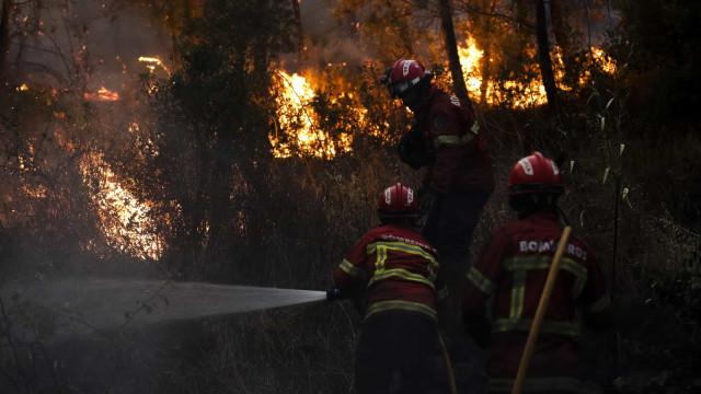 Governo: Prioridade no combate aos incêndios é a proteção das pessoas