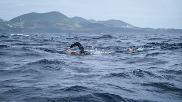 Picada de caravela impede alemão de atravessar ilha Terceira a nado
