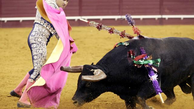 Apoiantes de touradas lançam petição contra decisão da autarquia