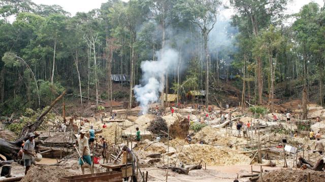 Brasil tem 453 áreas de garimpo ilegal de ouro na Amazónia