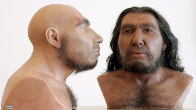Endogamia em grupos pequenos ajudou à extinção dos neandertal