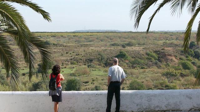 Autores de limpeza ilegal de terreno em Cacela Velha sujeitos a coima