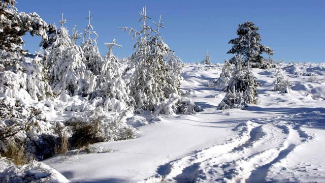 Aviso laranja por neve, chuva e agitação marítima no continente e Madeira