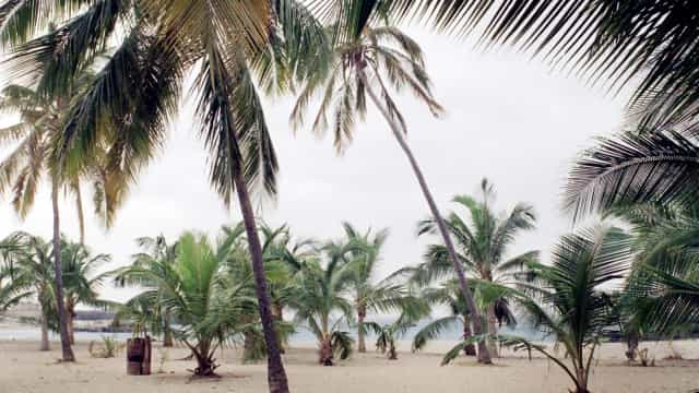 Dia dos Heróis Nacionais de Cabo Verde recorda morte de Amílcar Cabral