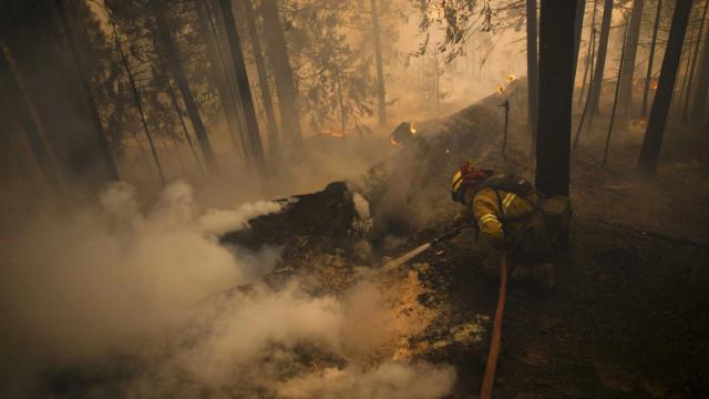 Donald Trump vai visitar Califórnia e falar com afetados pelos incêndios
