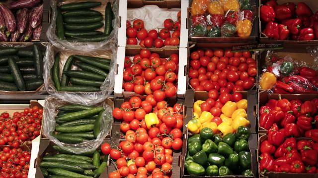 Legumes produzidos na Prisão-Escola de Leiria vendidos ao público