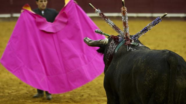 Alverca, em Vila Franca de Xira, não quer mais touradas na cidade
