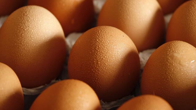 Vários supermercados na Bélgica retiram lotes de ovos por precaução