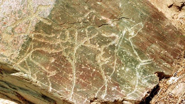 Novas descobertas arqueológicas no Coa mostram figuras em movimento