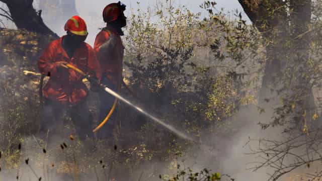 Mais de 220 bombeiros na Sertã, em Castelo Branco