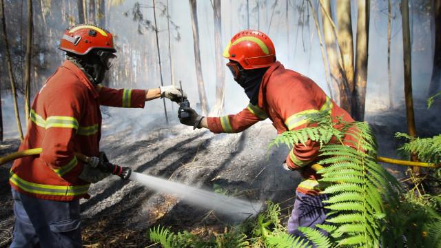 Fogo lavra na Trafaria e é combatido por 65 bombeiros