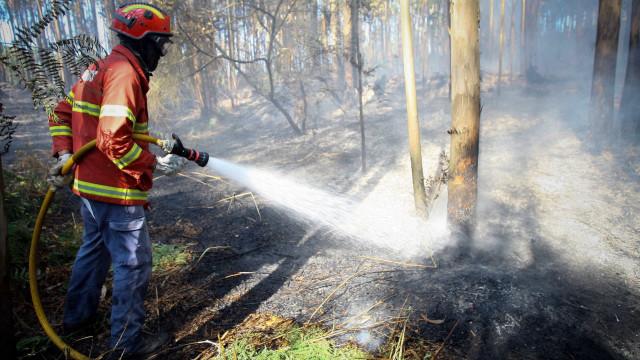 Mais de 25 concelhos de sete distritos em risco máximo de incêndio