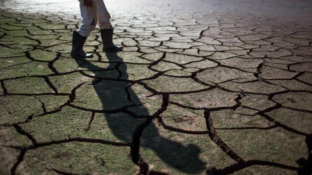 Partidos exigem ao Governo mais medidas sobre a seca