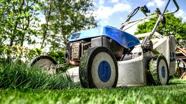 Presidência do Brasil vai gastar 293 mil euros com serviços de jardinagem