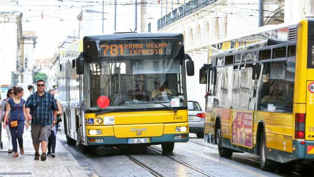 Carris passará a fiscalizar cumprimento das normas do Código da Estrada