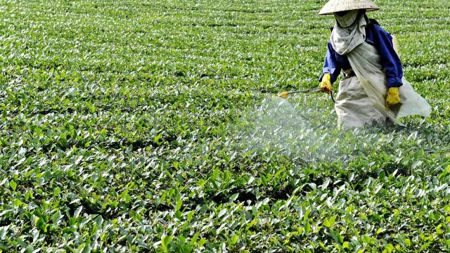 Produtores de pesticidas saúdam maior apreensão de produto na Europa