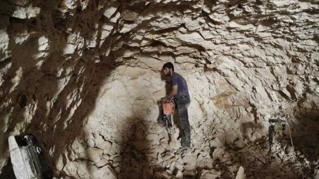 Cientistas descobrem o mais antigo desenho de animal em caverna