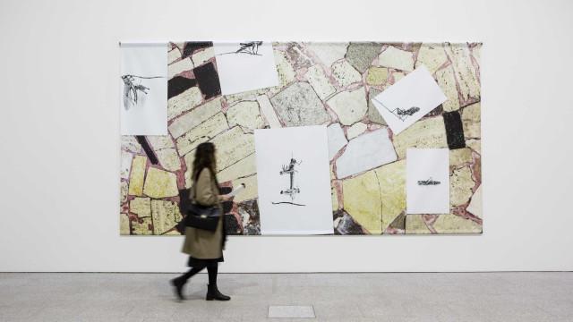Museu Berardo visitado por mais de dez mil pessoas no fim de semana