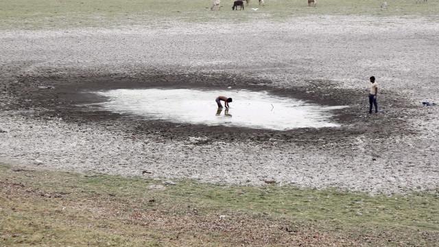 Medidas para combater seca sem avaliação ou execução, diz associação Zero