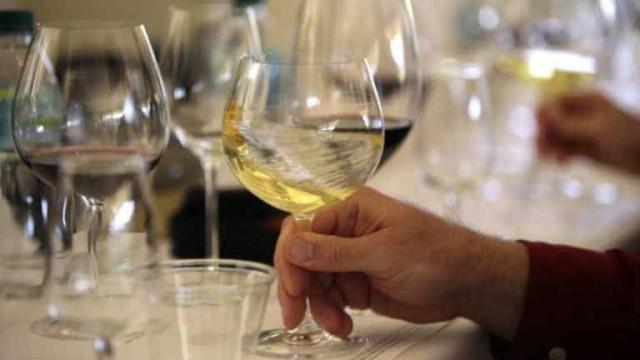 Câmara de Tondela aposta na promoção do vinho branco do Dão