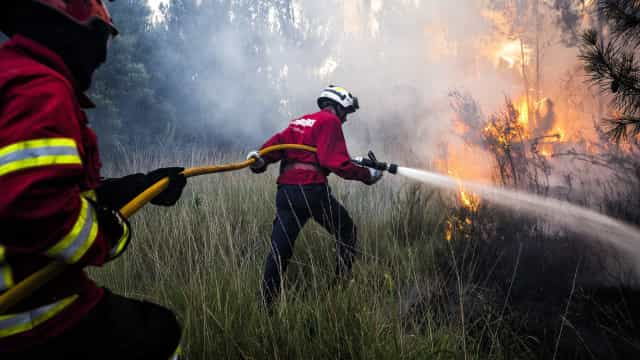 Cinco meios aéreos combatem fogo em Castelo Branco. Há uma pessoa ferida
