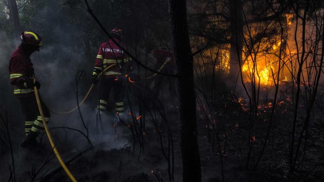 Seis meios aéreos combatem chamas em Sabrosa