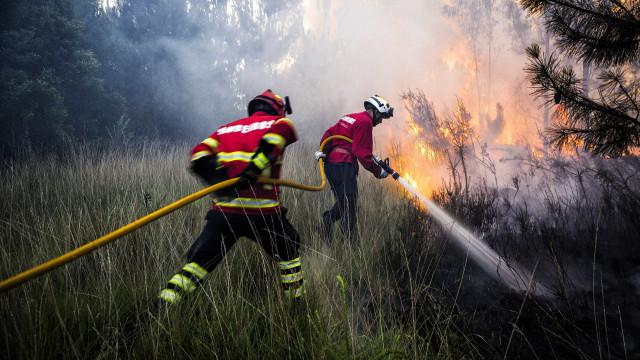 Dois bombeiros feridos em Nisa. A caminho 158 bombeiros espanhóis