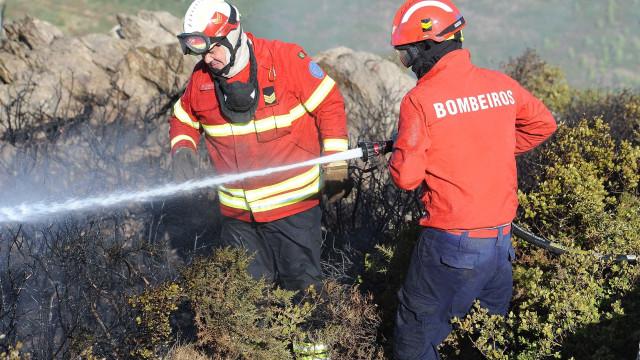 Dezanove concelhos de oito distritos estão em risco máximo de incêndio