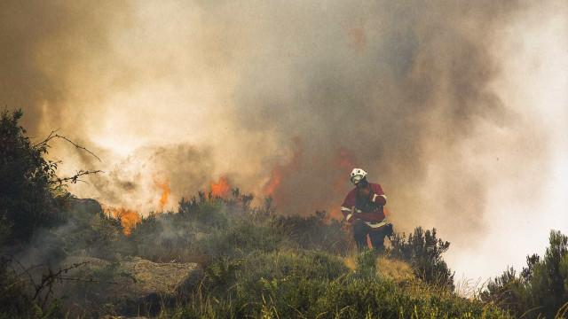 Incêndios obrigam ao corte da A1 entre Albergaria-a-Velha e Aveiro Sul