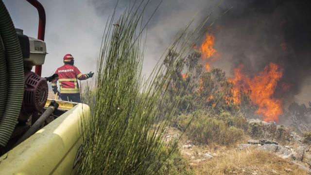 Sete aldeias evacuadas em Mação