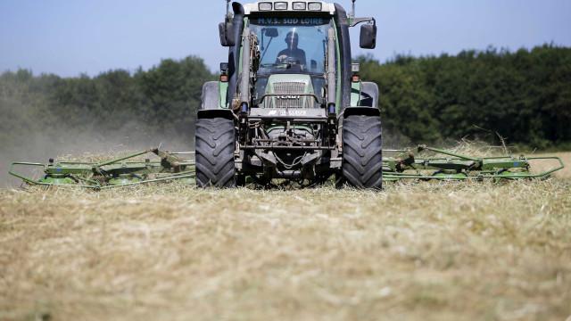 Despiste de trator agrícola provoca um ferido grave em Porto de Mós