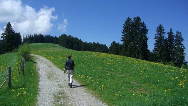 Jovem assediou estrangeira durante caminhada nos Açores. Acabou detido
