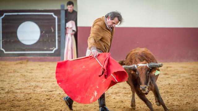 Morreu o cavaleiro Joaquim Bastinhas