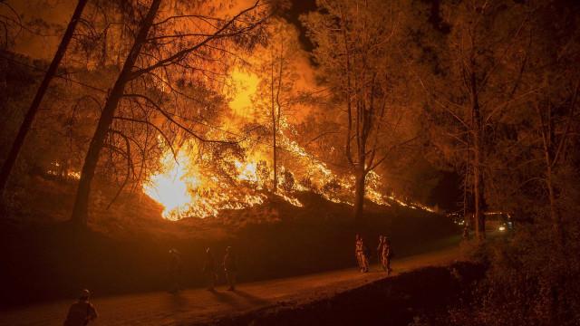"""""""Das 98 ocorrências de incêndio iniciadas hoje, apenas uma está em curso"""""""