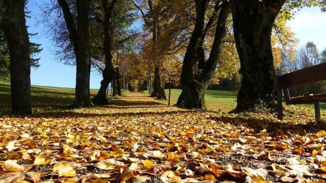 Mês de outubro foi seco, continente mantém-se em seca fraca a moderada