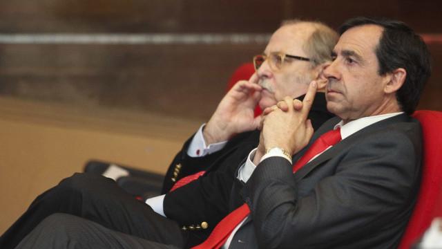 """Ex-'vice' do Benfica pede inquérito aos """"capangas"""" de Vieira"""