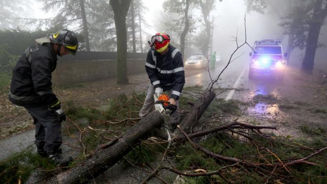 Mau tempo: Mais de 1100 ocorrências, especialmente quedas de árvores