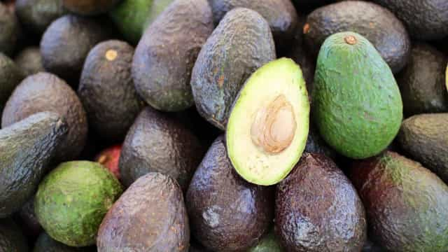 Venda ilegal de abacates já motivou detenções nos EUA